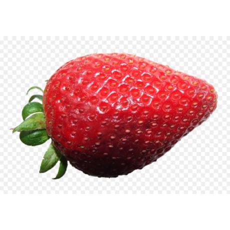 Evie 2 jahody stálerodiace kontajnerovane