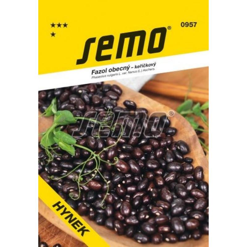 Hynek fazuľa kríčková suché semená fialová