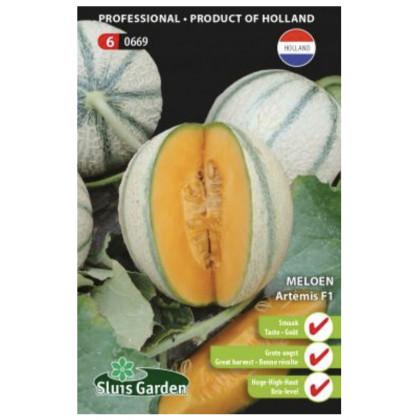 Artemis melon cukrovy rezistentny 8 semien