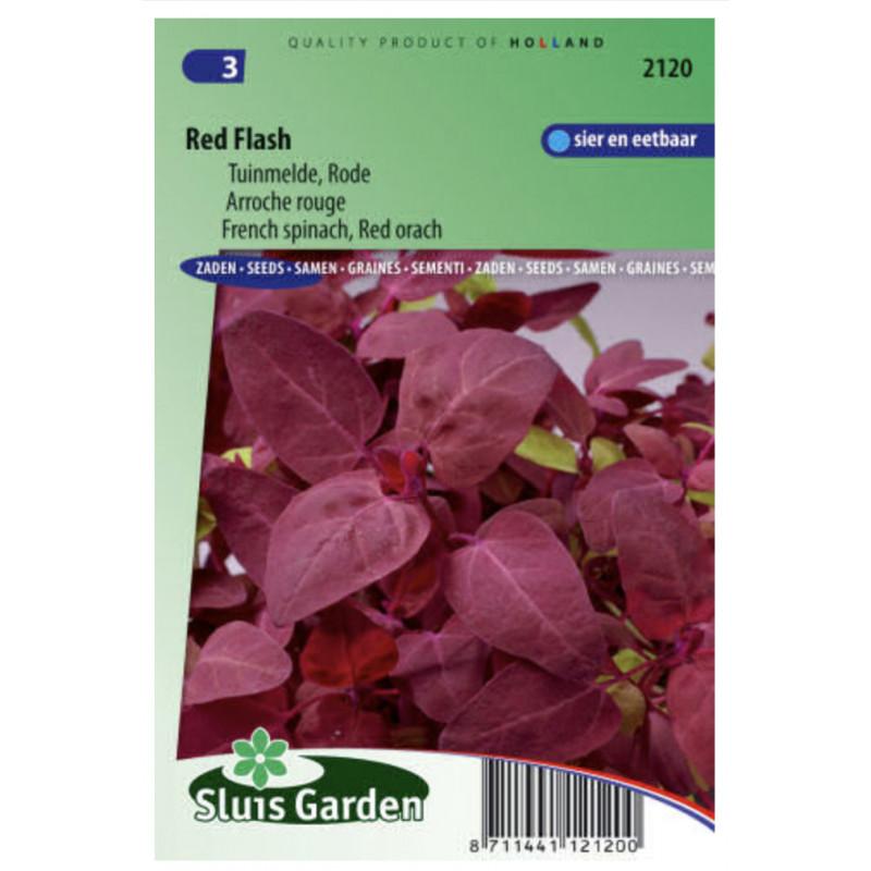 Loboda záhradná Red Flash červeny 140 semien