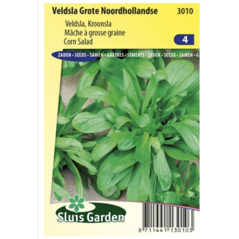 Valerianella locusta Grote Noordhollandse polníček 30 g