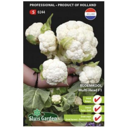 Multi Head F1 karfiol viac hlávkovy 15 semien