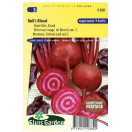 Red Gardenbeet Bulls Blood cvikla karmínovo červen..