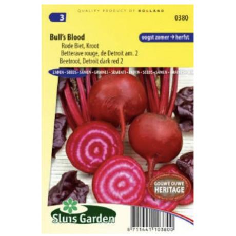 Red Gardenbeet Bulls Blood cvikla karmínovo červená 300 semien