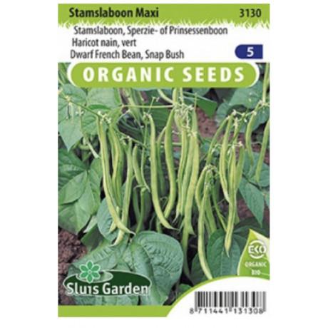 Maxi fazula kríčková zelená Bio 40 g