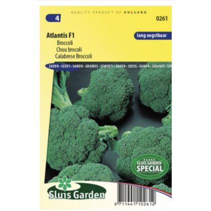 Atlantis F1 brokolica 85 semien