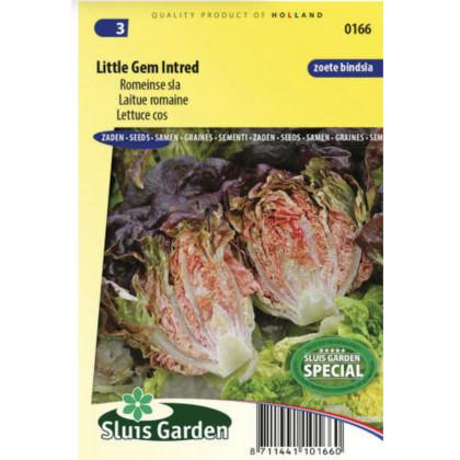 Little Gem Intred red hlavkovy šalát mini červeny 100 semien