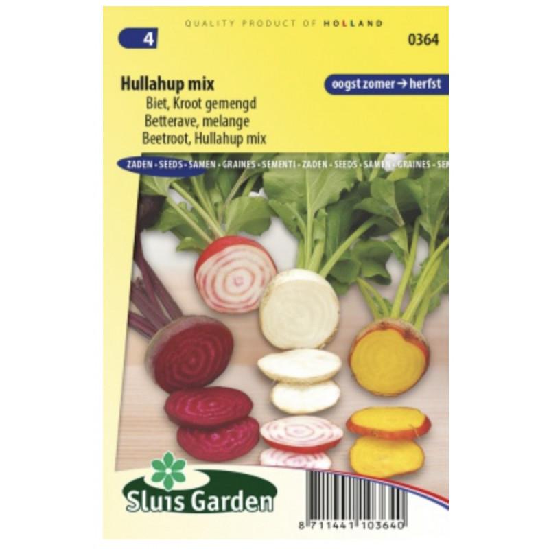 Zmes farebnej cvikly červená žltá biela 200 semien