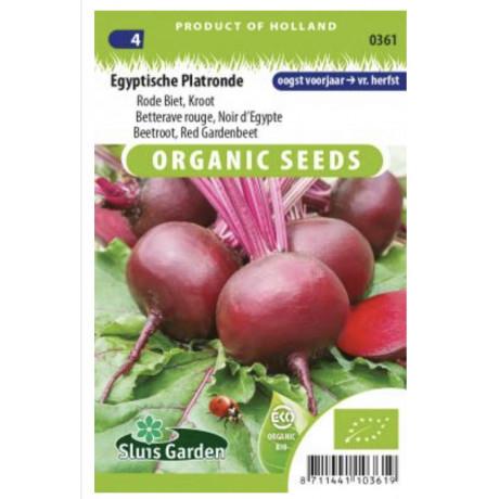 Noir d Egypt cvikla červená Bio 250 semien