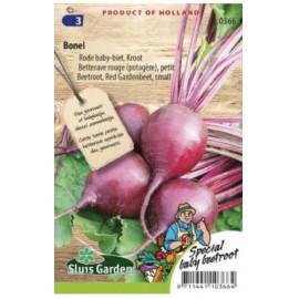 Maly Bonel červená cvikla malé buľvy 250 semien..