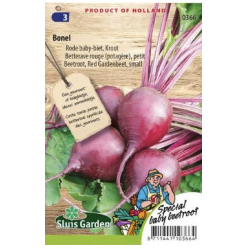 Maly Bonel červená cvikla malé buľvy 250 semien