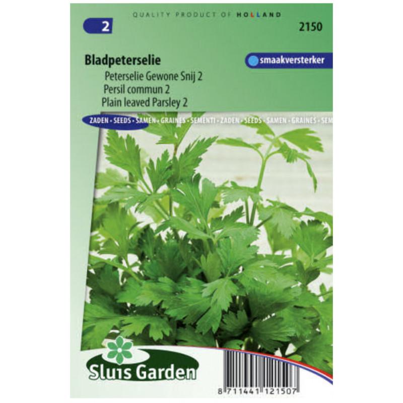 Petržlen vňaťový hladký 1200 semien