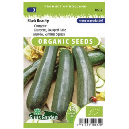 Black Beauty Bio cuketa 10 semien