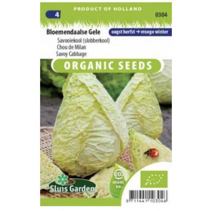 Bloemendaalse Gele kapusta Bio špicatá 65 semien