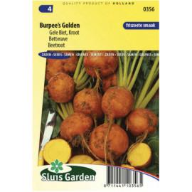 Burpee´s Golden cvikla žltá 180 semien