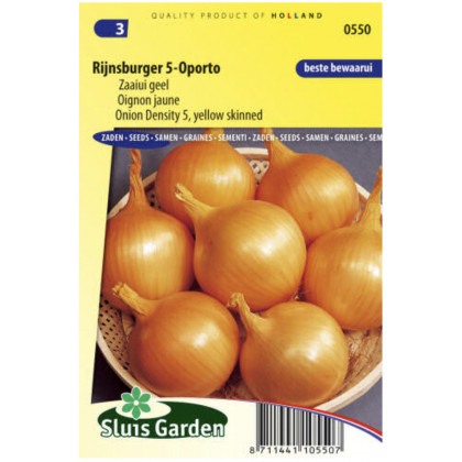 Rijnsburger 5 Oporto cibula 430 semien