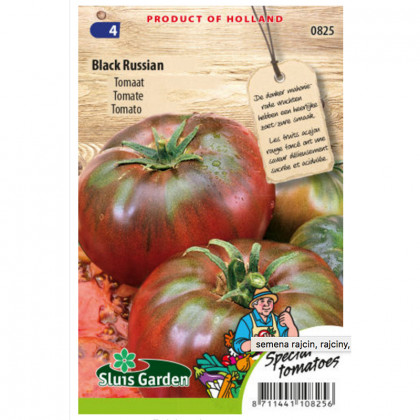 Black Russian rajčina veľká kolíková 25 semien