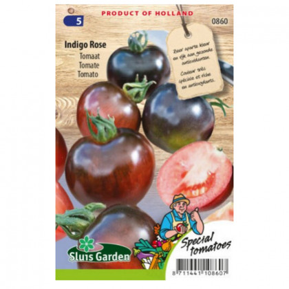 Indigo Rose paradajka unikátna kolíková 20 semien
