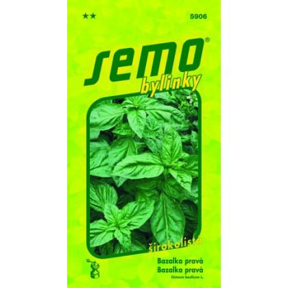 Bazalka Dark Green silno aromatická 1g