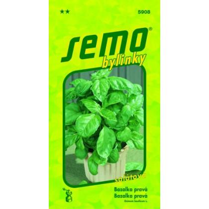 Bazalka Lettuce Leaf šalátová 1g