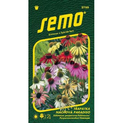 Echinacea purpurová Paradiso zmes 12s