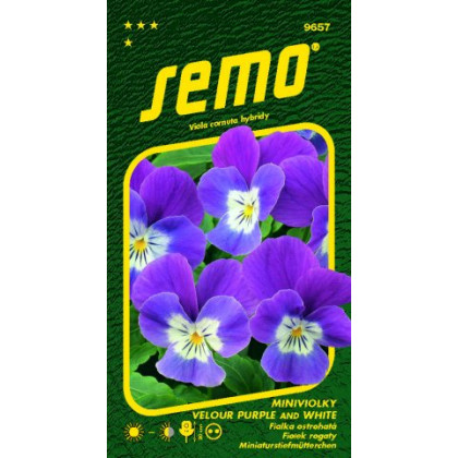 Fialka Velour Purple and White Viola 20s