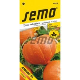 Amoro F1 tekvica hokkaido kríčková oranžová