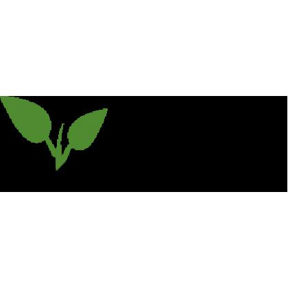 Alice Ďatelina plazivá Trifolium repens 250g