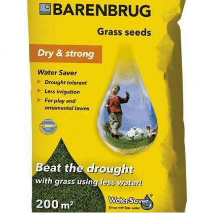 Water Saver Barenbrug odolná suchu