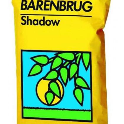 Shadow trávne osivo Barenbrug tieň slnko